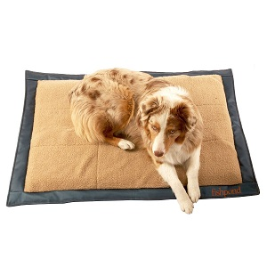 Favored Inflatable Air Mattress Travel Bed Ideas For Pet